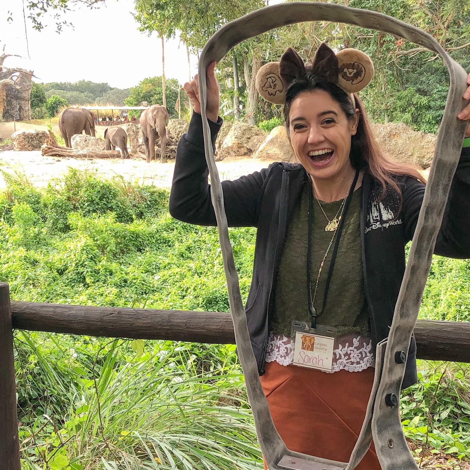 Sarah holding up an elephant collar at Animal Kingdom